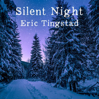 Eric Tingstad - Silent Night