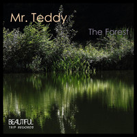 Mr. Teddy - The Forest