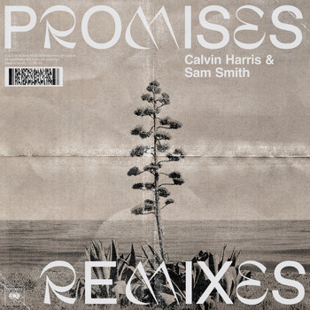 Calvin Harris, Sam Smith - Promises (Remixes)