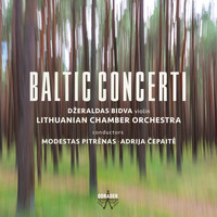 Lithuanian Chamber Orchestra - Baltic Concerti