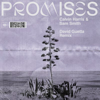 Calvin Harris, Sam Smith - Promises (David Guetta Extended Remix)