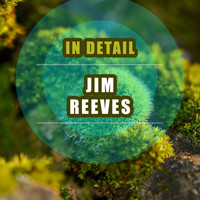 Jim Reeves - In Detail
