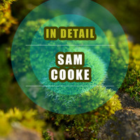 Sam Cooke - In Detail