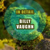 Billy Vaughn - In Detail