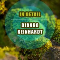 Django Reinhardt - In Detail