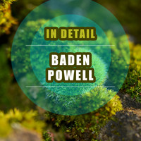 Baden Powell - In Detail