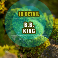 B.B. King - In Detail