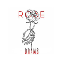Brams - Rose