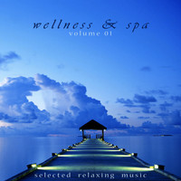 Jens Buchert - Wellness & Spa, Vol. 1