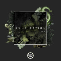Various Artists - Syndication, Vol. 34