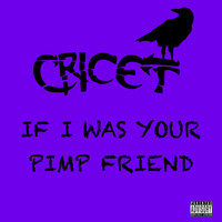 Cricet - If I Was Your Pimp Friend (Explicit)