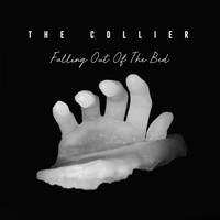 The Collier - Falling Out of the Bed