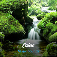 Relaxing Sleep Music, Music for Absolute Sleep, Relaxation Music Guru - #20 Calm Music Sounds for Soothing Meditation