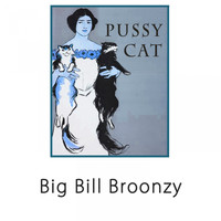 Big Bill Broonzy - Pussy Cat