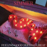 Simmer - Feeling Good Feeling Great (Explicit)
