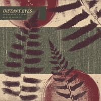 Distant Eyes - Twentynine Palms