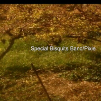 Stylianos M. Pananakis - Special Bisquits Band/Pixie