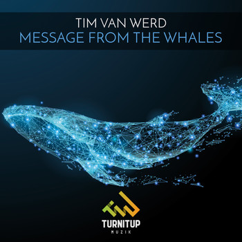 Tim van Werd - Message from the Whales