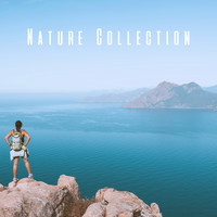 White Noise Research, Sounds of Nature Relaxation and Nature Sounds Artists - Nature Collection