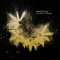 Damien Fleau - Imaginary Dream