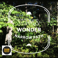 Storm & Wonder - Narrow Path