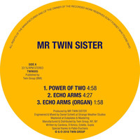 Mr Twin Sister - Power of Two / Echo Arms