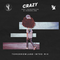 Lost Frequencies & Zonderling - Crazy (Tomorrowland Intro Mix)