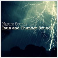 Nature Sounds - Rain and Thunder Sounds