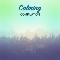 Relaxing Sleep Music, Music for Absolute Sleep, Relaxation Music Guru - #15 Calming Compilation for Relaxing and Curing Insomnia