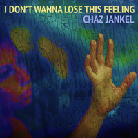 Chaz Jankel - I Don't Wanna Lose This Feeling