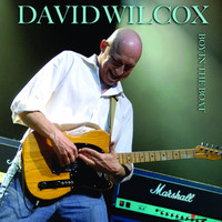 David Wilcox - Boy In The Boat