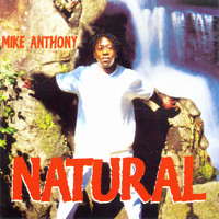 Mike Anthony - Natural