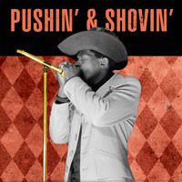 Junior Wells - Pushin' & Shovin' (Live)