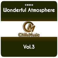 Various Artists - Wonderful Atmosphere Vol.3