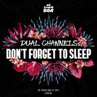 DUAL CHANNELS - Don't Forget To Sleep