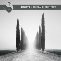 DJ Rostej - My Ideal of Perfection