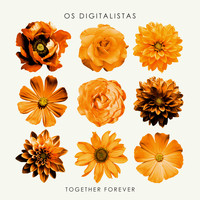 Os digitalistas - Together Forever