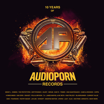 Various Artists - 10 Years of Audioporn Records LP