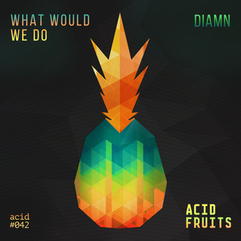 Diamn - What Would We Do
