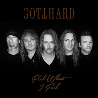 Gotthard - Feel What I Feel (Live, Acoustic 2018)