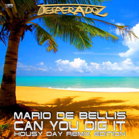 Mario De Bellis - Can You Dig It, Pt. 3 (Housy Day Remix Edition)