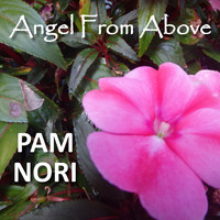 Pam Nori - Angel from Above