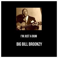 Big Bill Broonzy - I'm Just a Bum (Explicit)