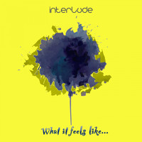 Interlude - What It Feels Like