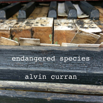 Alvin Curran - Alvin Curran: Endangered Species