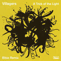 VILLAGERS - A Trick of the Light (Bibio Remix)