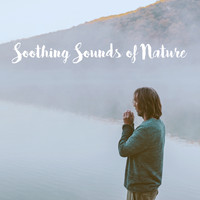 Rain Sounds Nature Collection, Rain Sounds Sleep and Nature Sound Series - Soothing Sounds of Nature