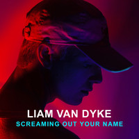 Liam Van Dyke - Screaming out Your Name