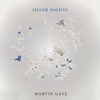 Marvin Gaye - Silver Nights