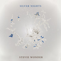 Stevie Wonder - Silver Nights